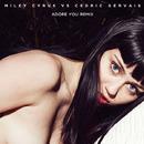 Adore You (Remix) [Radio Edit]/Miley Cyrus vs. Cedric Gervais