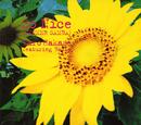 So Nice (SUMMER SAMBA)/葉加瀬太郎 featuring BASIA