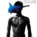 夏の惑星/THE SQUARE/T-スクェア