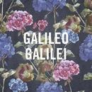 嵐のあとで/Galileo Galilei