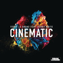 Cinematic feat. Denny White (Radio Edit)/Fedde le Grand