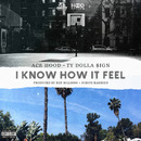 I Know How It Feel feat. TY Dollar $ign/Ace Hood