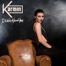 Didn't Know You/Karmin