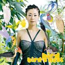 bird's nest/bird