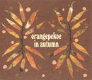 orangepekoe in autumn/orange pekoe