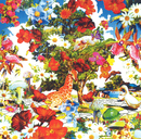 Wild Flowers/orange pekoe