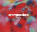 Modern Lights/orange pekoe