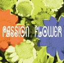 PASSION FLOWER/T-SQUARE