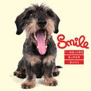 SMILE/T-SQUARE SUPER BAND