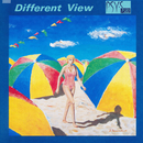 Different View/PSY・S[saiz]