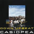DOWN UPBEAT/CASIOPEA 3rd