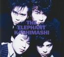 THE ELEPHANT KASHIMASHI/エレファント カシマシ