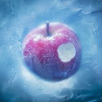 凍えそうな季節から/Aimer