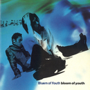 bloom of youth/Bluem of Youth