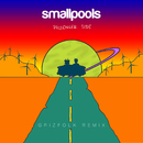 Passenger Side (Grizfolk Remix)/Smallpools