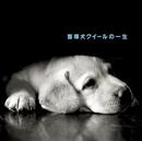 盲導犬クイールの一生/石田 ゆり子