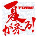 夏が来る!/TUBE