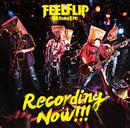 Recording Now!!!/FEELFLIP