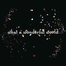 What A Wonderful World/Salyu