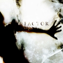FACTOR/Angelo