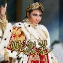 星組 大劇場「眠らない男・ナポレオン -愛と栄光の涯に-」Act-2/宝塚歌劇団 星組