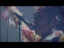 いい事ばかりはありゃしない(2008.2.10@日本武道館)((2008.2.10 @ Nippon Budokan))/忌野清志郎