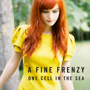 One Cell In The Sea/A Fine Frenzy