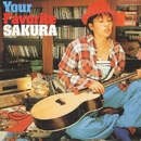 Your Favorite SAKURA/SAKURA
