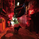 Black Market Blues e.p./9mm Parabellum Bullet