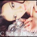 CAMELLIA/椿