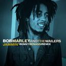 Jammin' (Benny Benassi Remix)/Bob Marley