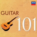 101 Guitar/Various Artists
