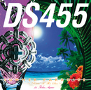 SUMMER PARADISE~Risin' To Tha Sun~feat.青山テルマ/DS455