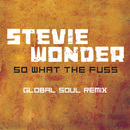 So What The Fuss-Global Soul Remix/スティーヴィー・ワンダー