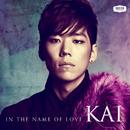 愛という名前/Kai