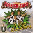 A echter Steirerklang/Edlseer Trio
