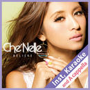Believe (Instrumental, Karaoke and A Cappella)/Che'Nelle