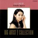 BIG ARTIST BEST COLLECTION/小川知子/小川知子