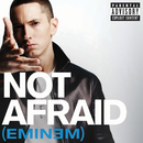 Not Afraid/Eminem
