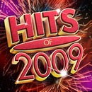 Hits Of 2009/Various Artists