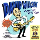 Greatest Hits Too/David Wilcox