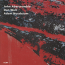 J.ABERCROMBIE/WHILE/John Abercrombie, Dan Wall, Adam Nussbaum