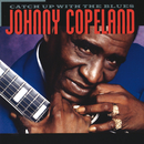 Catch Up With The Blues/Johnny Copeland