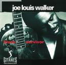 Blues Survivor/Joe Louis Walker