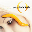 Thirteenth Step/A Perfect Circle