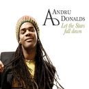 Let The Stars Fall Down/Andru Donalds