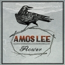 Flower/Amos Lee