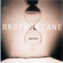 Seeds/Brother Cane