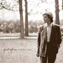 Brilliant Trees/David Sylvian