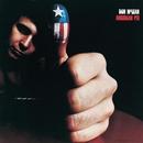 American Pie/Don McLean